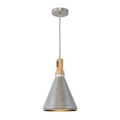 1 Light Pendant in Rolled Steel Finish