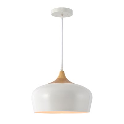 1 Light Pendant in White Finish
